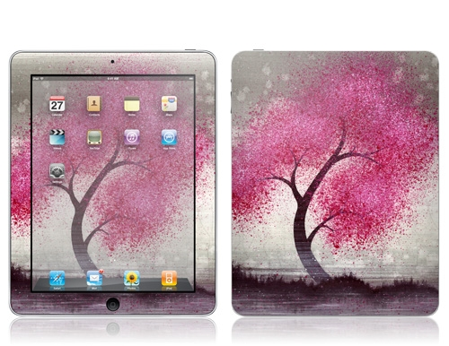 Cover rimovibile iPad