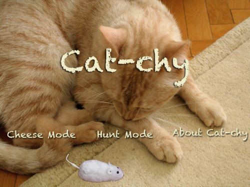 gatto che gioca con iPad